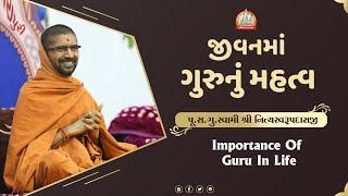 गुरुपूर्णिमा स्पेश्यल   જીવનમાં ગુરુનું મહત્વ   Importance of Guru in Life   Swami Nityaswarupdasji