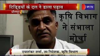 Dholpur    कृषि विभाग ने संभाला मोर्चा, टिड़डीयो के दल ने डाला पड़ाव   JAN TV