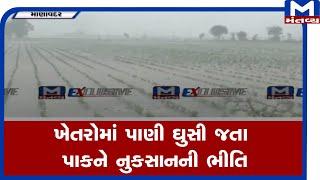 Manavadar: ખેતરોમાં ફરી વળ્યા વરસાદી પાણી