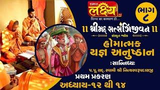 શ્રીમદ્દ સત્સંગિજીવન હોમાત્મક યજ્ઞ અનુષ્ઠાન ||Swami Nityaswarupdasji || Tirthdham Sardhar || Part-8
