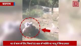 55 साल के व्यक्ति पर भालू ने किया हमला... राहगीरों ने जानपर खेलकर बचाया