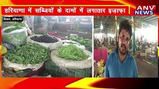 हिसार : हरियाणा में सब्जियों के दामों में लगातार इज़ाफ़ा ! ANV NEWS HARYANA