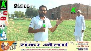 गोसेवा को सबकुछ मान संत बने युवा बाबा तीर्थ सिंह ने गोवंश के लिए अनूठा काम, इलाके में हो रही चर्चा