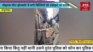 Bulandshahr News // मोहल्ला मीरा Hotspot में लगी बिल्लियों को उखाड़ने का प्रयास