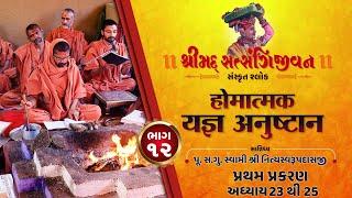 શ્રીસત્સંગિજીવન હોમાત્મક યજ્ઞ અનુષ્ઠાન I Part-12 I Swami Nityaswarupdasji I Tirthdham Sardhar
