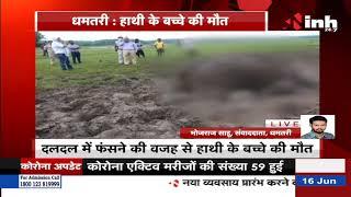 Chhattisgarh News || Dhamtari में दलदल में फंसने की वजह से हाथी के बच्चे की मौत
