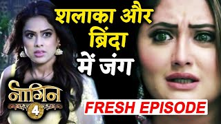 Naagin 4: Shalaka And Brinda To Have A HUGE Face Off In Fresh Episode To Air THIS Week