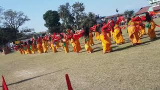 বড়ো কছাৰী নৃত্য || Bodo Kachari Dance of Assam