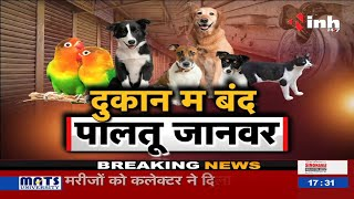 Chhattisgarh News :  दुकान म बंद पालतू जानवर