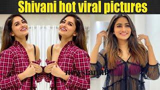 Shivani glamour photo shoot viral   ஷிவானி என்னமா இப்படி இறங்கிட்டீங்க