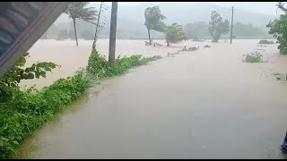 #FloodSituation   Water-level rising at an alarming rate in Ibrampur, Flood fear looms