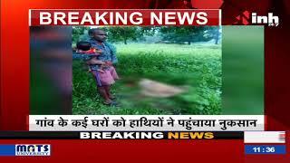 Chhattisgarh News || ऐतमा इलाके में हाथियों की दस्तक