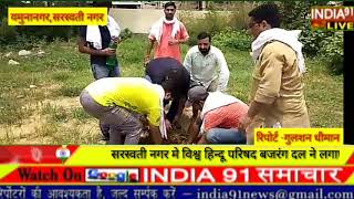 India91 live सरस्वती नगर प्रखंड विश्व हिन्दू परिषद बजरंग दल ने किया पौधरोहण