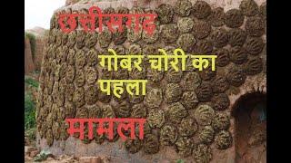 Chhattisgarh News || गोबर चोरी का पहला मामला, समिति द्वारा जांच शुरु