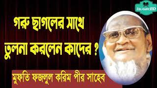 গরু ছাগলের সাথে তুলনা করলেন কাদের ? ওয়াজ মাহফিল । Maulana Mahmudul Hasan | Islamic Waz@Islamic BD