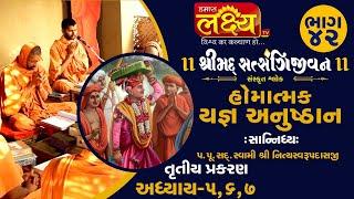 શ્રીમદ્દ સત્સંગિજીવન હોમાત્મક યજ્ઞ અનુષ્ઠાન ||Swami Nityaswarupdasji || Tirthdham Sardhar || Part-42