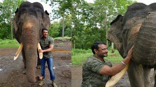 ವಿಶ್ವ ಆನೆ ದಿನದ ವಿಶೇಷ ವಿಡಿಯೋ | Darshan Celebrates Worlds' Elephant Day