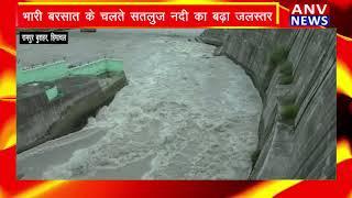 Rampur(Hp) : भारी बरसात के चलते सतलुज नदी का बढ़ा जलस्तर ! ANV NEWS HIMACHAL PRADESH !