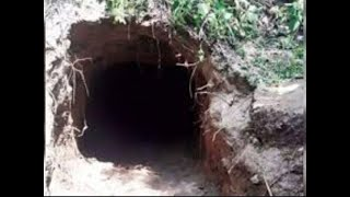 J&K: BSF detects tunnel along India-Pakistan international border