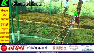खेती के साथ साथ केंचुआ फार्मिंग से किसान रमेश बाबल कमा रहा लाखों रुपये। फार्म का प्रोसेस- 9992352780