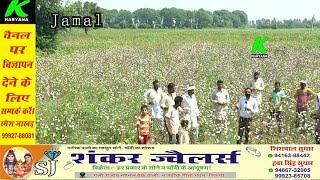 जमाल व माधोसिंघाना गांव के बीच खराब फसल को लेकर किसानों का ऐलान इस बार चुनावों में नेताओं से पूछेंगे