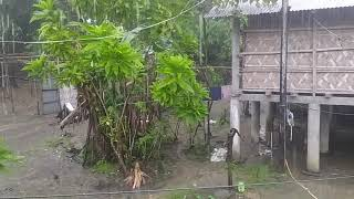Rainy beauty of our village