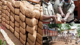 600.Kgs Ganja Seized | By Police | Sanga Reddy |@Sach News