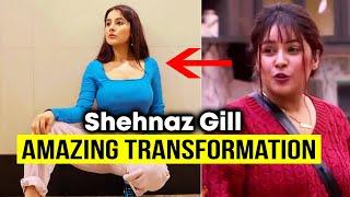 Shehnaaz Gill Amazing Transformation After Bigg Boss 13