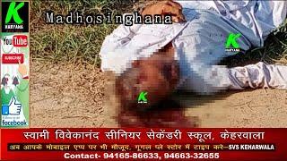 सिरसा के गांव माधोसिंघाना के खेतों में मिली अज्ञात व्यक्ति की लाश,पुलिस ने कब्जे में ले जांच की शुरू