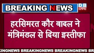 Harsimrat Kaur Badal Union Minister Quits Over Centre's new farm bills   हरसिमरत कौर बादल   #DBLIVE