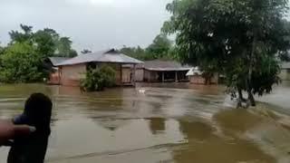 Flood in Dhemaji district, Assam