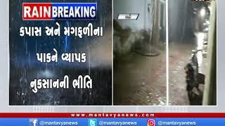 Amreli: ગ્રામ્ય વિસ્તારોમાં વરસાદ | Rain |