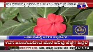 ಮೈಸೂರು ಅರಮನೆ ಆವರಣದಲ್ಲಿ ಸಿದ್ಧವಾಗ್ತಿದೆ 'ಸಸ್ಯಲೋಕ'..!|Dasara| Aramane| Flowering Plants| Mysuru
