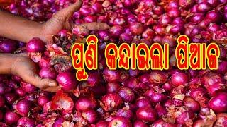 "Onion Price in Bhubneswar market "" ପିଆଜ ଦର ଆକାଶ ଛୁଆଁ """