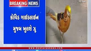 Ahmedabad: કોરોના કાળમાં ખુલશે કાંકરિયા પ્રાણી સંગ્રાલય