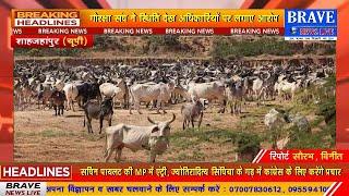 जगन्नाथपुर की गायों की दुर्दशा अब भी बरकरार, आश्वासन के बाद भी अधिकारियों ने नहीं किया कोई सुधार