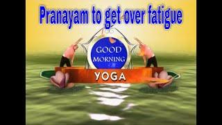 थकान भगाने के लिए प्राणायाम योग  How to get rid of fatigue through Pranayam. Yoga for wellness