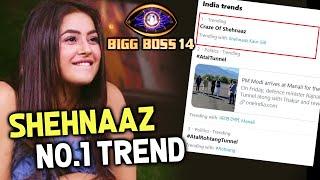 Bigg Boss 14: Shehnaaz Gill Ho Rahi Hai Twitter Par No.1 Par Trend | Craze Of Shehnaaz