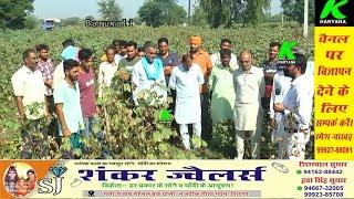 बरूवाली गांव में कितने प्रतिशत हुई फसल खराब, अधिकारियों की क्या है रिपोर्ट, क्या कहते हैं किसान
