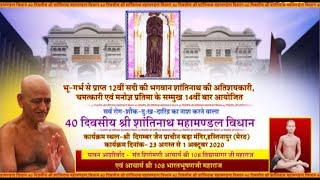 Vishesh | Shantinath Vidhan | शांतिनाथ विधान | हस्तिनापुर | Date:-29/09/20