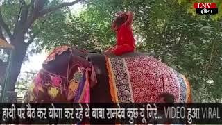 हाथी पर बैठ कर योगा कर रहे थे बाबा रामदेव कुछ यूं गिरे.., VIDEO हुआ VIRAL