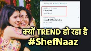 Bigg Boss 14: Shefali Bagga Aur Shehnaaz Ko Lekar Kyon Trend Ho Raha Hai #ShefNaaz