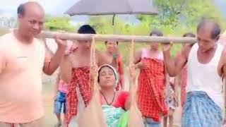 লাইকা দধীয়াত মানুহৰ জীৱন || Life in Laik Dodhiya Bongaon & Dibru Saikhuwa Rain Forest