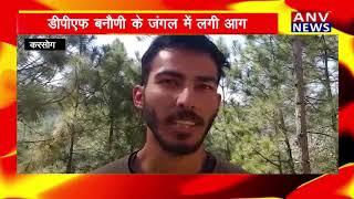 Karsog : डीपीएफ बनौणी के जंगल में लगी आग ! ANV NEWS HIMACHAL PRADESH !