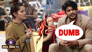 Bigg Boss 14: Sidharth Shukla Ne Kaha Rubina Ko DUMB, Kya Hoga Rubina Ka Jawab?