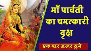 देखिए मां पार्वती का लगाया यह चमत्कारी वृक्ष क्यों है प्रसिद्ध | Navratri Special | SR DARSHAN