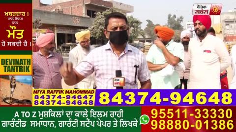 Amritsar दाना मंडी में कितनी पहुंची Paddy की फ़सल, प्रबंधों से किसान कितने खुश, देखें Ground Report