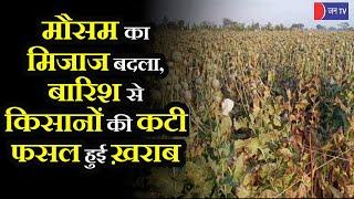 Mundwa News | मौसम के बिगड़े मिजाज से किसानों की कटी फसल हुई ख़राब