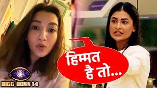 Bigg Boss 14: Gauhar Khan CALLS Pavitra DARPOK, Himmat Hai To Samne Bol