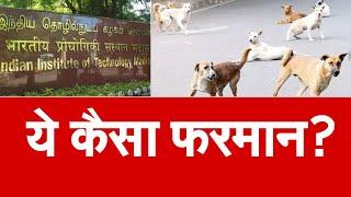 कुत्तों को खाना खिलाया तो लगेगा 10 हजार रुपया जुर्माना, आईआईटी मद्रास का फरमान